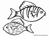 Fish Coloring Pages Aquarium Realistic Printable Sheet Guffy Providing Oscar Sword Pencil Tail sketch template