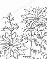 Botanical Coloring Adult Zentangle Adultcoloring Sell sketch template