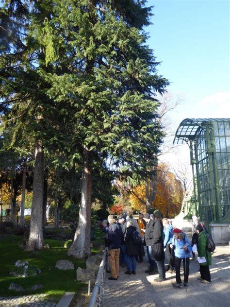 Japanischer Garten Schönbrunn by Botanische Spaziergaenge At Thema Anzeigen Exk 11 11