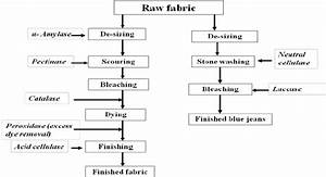 A Schematic Outline Of Textile Processing And Application Of Enzymes In