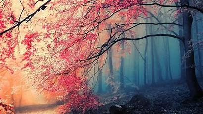 Artistic Nature Autumn Fall Paintings Landscapes Wallpapers