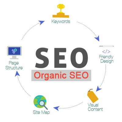 organic seo organic seo services chicago il buscemi it solutions