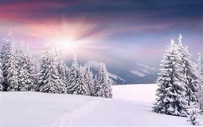 Snow Winter Landscape Wallpapers Carpathian Mountains Autumn