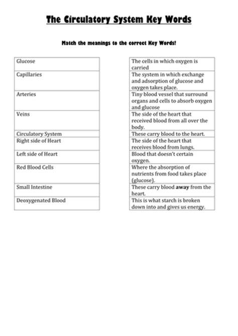 worksheets  ks respiration  jmistr teaching