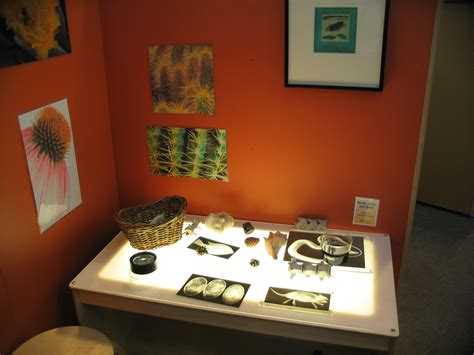 reggio emilia light table museum notes light table explorations