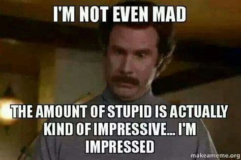 Dumb Memes - impressive memes image memes at relatably com