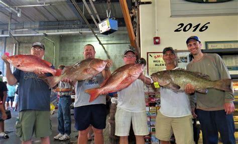 grouper snapper gag seasons ready getting american florida
