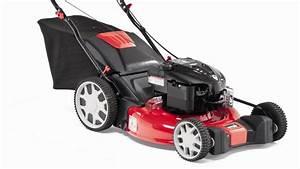Tondeuse Electrique Pas Cher : gazon tracteur ou tondeuse que choisir ~ Premium-room.com Idées de Décoration