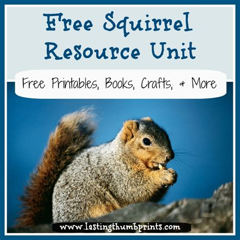 free homeschool resources about squirrels 940 | squirrelunit
