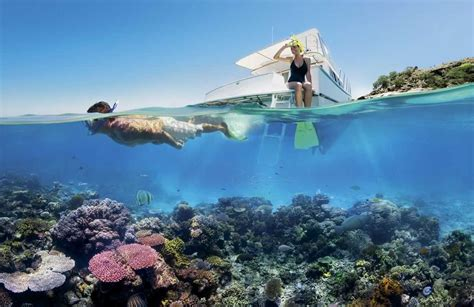 Best Dive Spots In The World by Top 10 Best Dive Spots In The World