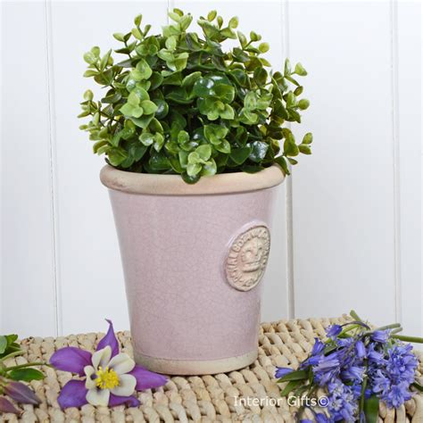 kew garden tom small plant pot powder pink royal