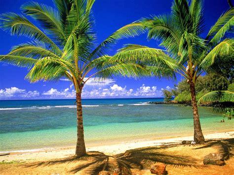 Beautiful Beach Picture Free Wallppaer Beautiful Scenery