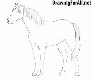 How to Draw a Horse | DrawingForAll.net