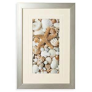 buy shell menagerie i wall art from bed bath beyond