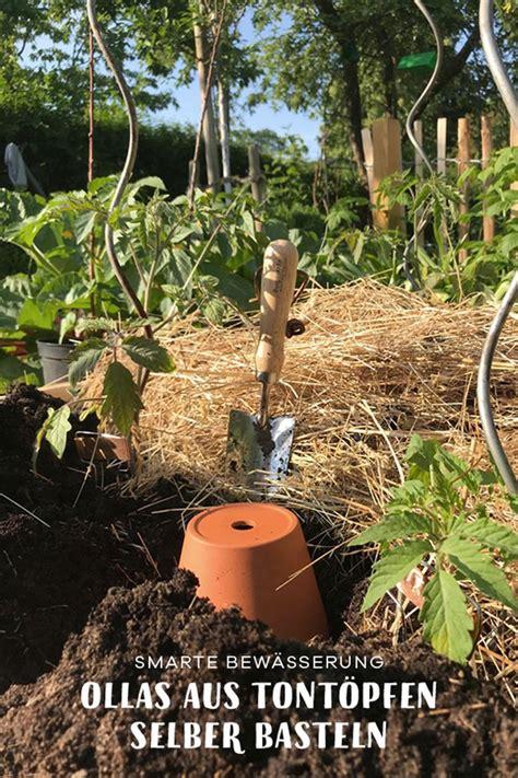 Garten Pflanzen Ohne Gießen by Tomaten Fast Ohne Gie 223 En Garten Bew 228 Sserung Garten