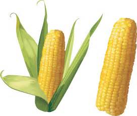 Corn Clip Art Transparent Background