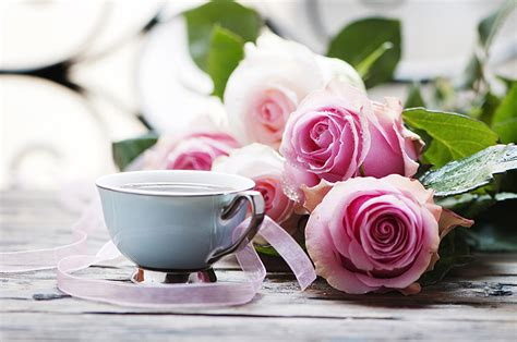 Photo Roses Coffee Pink Color Flowers Cup Coffee Grinders Vancouver Cups Logo Grinder Zero Retention Tesco Break Owner Made In The Usa Reviews Nz Wall Mounted