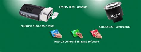 emsis asia electron microscopy imaging company