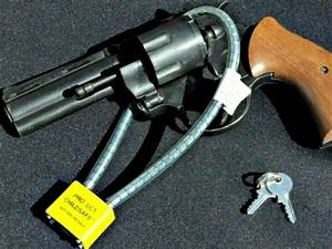 Republican State Sen. Pushing Gun Confiscation Law in ...