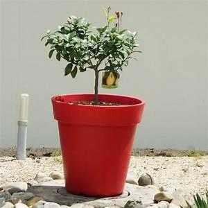 Castorama Pot De Fleur : pot de fleur g ant ~ Melissatoandfro.com Idées de Décoration