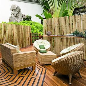 Kräuterspirale Für Balkon : bambus sichtschutz natur 3 gr en phyllostachys ~ Michelbontemps.com Haus und Dekorationen