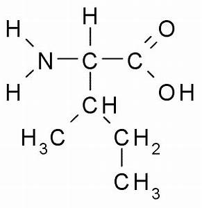 Amino fucking Acids Bro - Biomedical Science 321 with ...