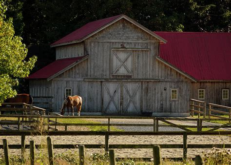 barn horse blackstone jordan farm photograph shed feature 27th which march uploaded structures