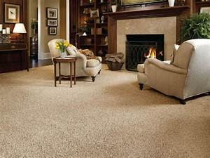 Living Room Carpet at Home Design Ideas