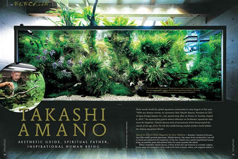 takashi amano aquascaping techniques aquascaping inspiration tips and tricks aquascaping