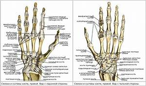 Применение желатина от болей в суставах