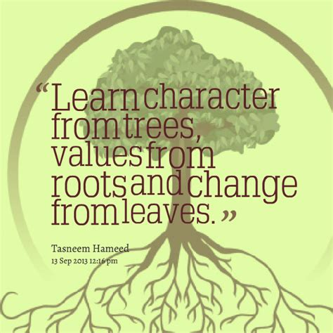 quotes  trees  roots quotesgram