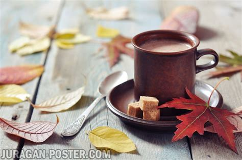 cup  coffee   autumn background jual poster