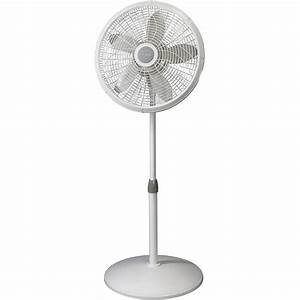 Lasko Products 1820 18 In  Adjustable Elegance And