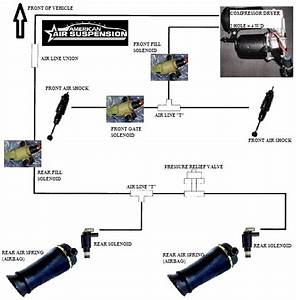 31 2000 Ford Expedition Rear Suspension Diagram
