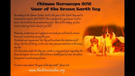 chinese horoscope  year   dog youtube