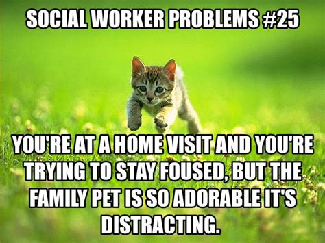 Social Work Meme - 18 best images about social work humor on pinterest quotes quotes change the worlds and hey girl