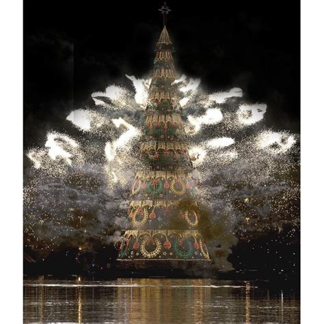 tallest xmas teee in tge workf the best worst weirdest and tallest trees in the world telegraph