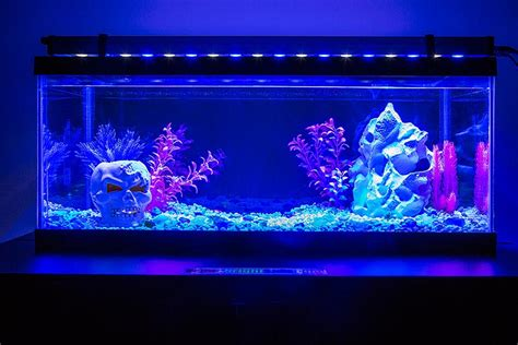blue led aquarium light led aquarium lighting the buyer s guide home aquaria