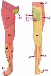 yoga exercises sciatica pain relief