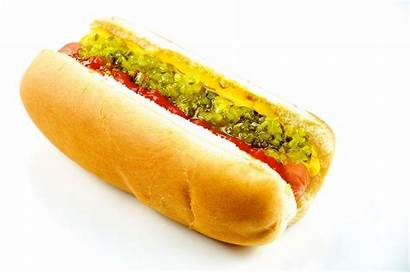 Wikipedia Hotdog Dog
