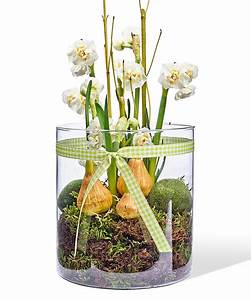 Blumenzwiebeln Im Glas : narzisse wei im glas jetzt bestellen bei valentins valentins blumenversand blumen und ~ Markanthonyermac.com Haus und Dekorationen