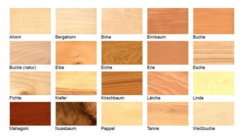 Welche Holzarten Gibt Es by Lifttoilette Stv100 Lift Wc Seniorengerechte