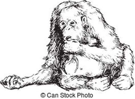 sumatra stock illustrations  sumatra clip art images