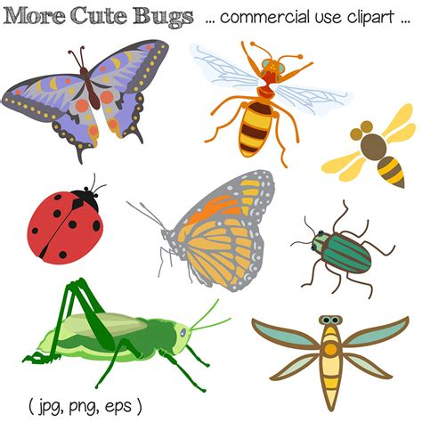 Insect Clipart Bug Clipart Bug Clip Insect Clipart Insect Clip