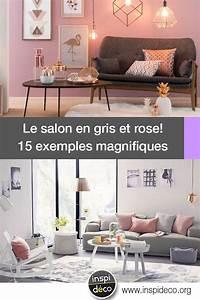 Salon Gris Et Rose : salon en gris et rose voici 15 exemples pour se faire une ~ Melissatoandfro.com Idées de Décoration