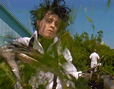 edward scissorhands trees nine ways to keep the giant spider invasion at bay metro news