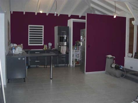 cuisine aubergine et grise couleur mur cuisine cuisine je nu0027aime pas le style