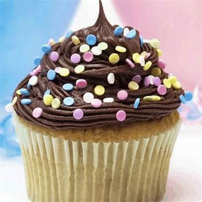 Cupcakes Picsart