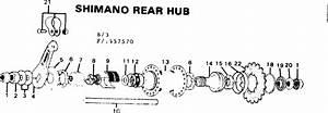 Bicycle Rear Wheel Parts Diagram