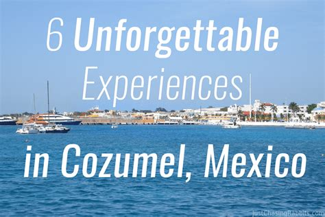 6 Unforgettable Experiences in Cozumel | Just Chasing Rabbits